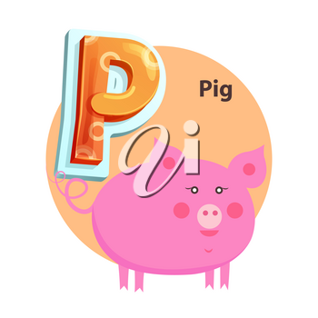 Pig plump character is for P letter in english crisscross-row. Vector cartoon abecedarian poster with piglet for children and kids language lesson.