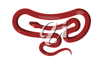 Red cartoon flat snake isolated on white background. Vector illustration of dangerous cold-blooded scaly reptile that lives all over world. Picture of wild world s representative that can poison.