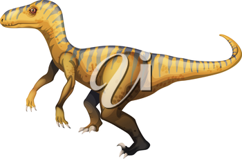 Illustration of a velociraptor