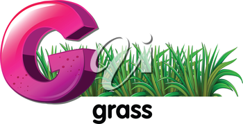 Illustration of a letter G for grass on a white background