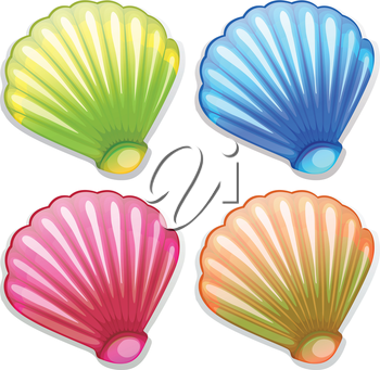 Illustration of the colourful shells on a white background