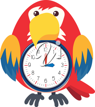 A bird clock on white background illustration