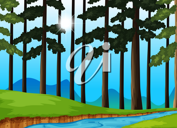 Trees and river in the forest illustration