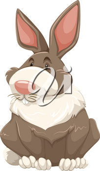 White and brown rabbit with long ears