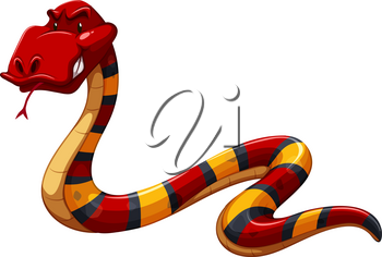 Colourful scary snake on a white background