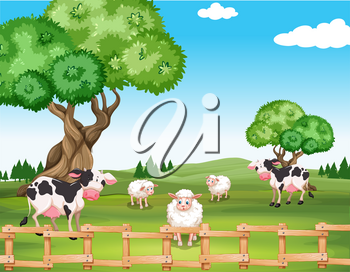 Sheeps and cows in the field illustration