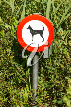 Old damaged sign in the bushes - dogs forbidden, isolated