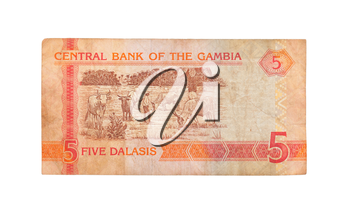 5 Gambian dalasi bank note, isolated on white