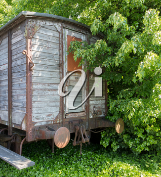 Carriage used for people transport during WW2, rusted and overgrown