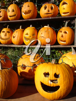 Stock Photo of Jack O' Lanterns