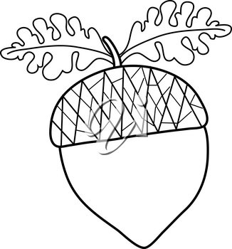 Black and White Clip Art Illustration of an Acorn