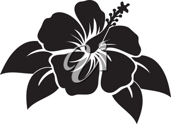 Black and White Clip Art Illustration Of A Hibiscus Flower