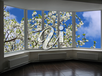 metal-plastic windows overlooking the garden with blossoming cherry-tree
