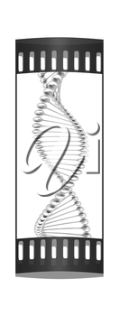 DNA structure model on a white background. The film strip