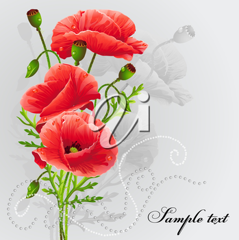 Royalty Free Clipart Image of a Poppy