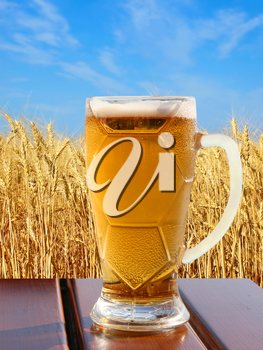 Beer glass on wooden table against of golden wheat ears and blue sky.