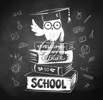 Vector chalk drawing of owl sitting on books with Welcome Back to School lettering.