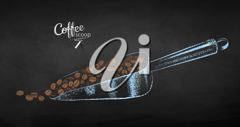 Vector chalk drawn sketch of metal coffee scoop with pile of beans on chalkboard background.