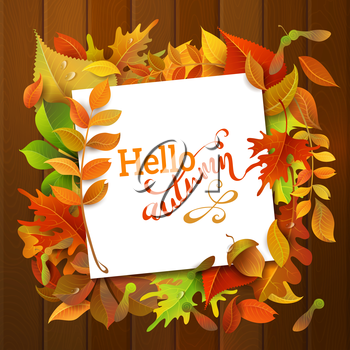 Bright colourful autumn birch, elm, oak, rowan, maple, chestnut, aspen leaves and acorns on wood background. White square sheet of paper on them. You can place your text in the center.