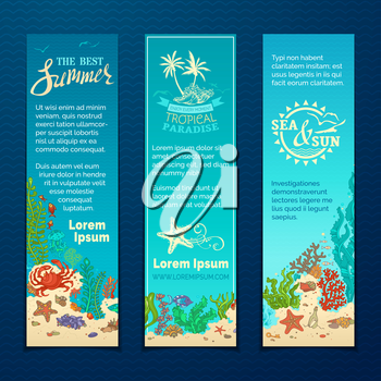 Various fish, starfish, crab, shell, jellyfish, algae, bottle with a letter and key on the bottom. There is place for your text on blue background.