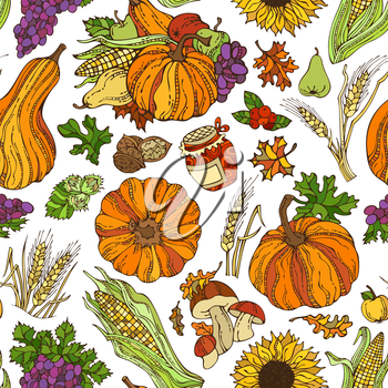 Autumn leaf, nut, berry, pumpkin, corn, wheat, mushroom, grape, jam, apple, pear on white background. Boundless pattern for your design. Harvest time. Thanksgiving day.