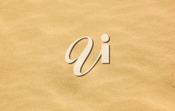 Close-Up Of Sand Background Texture.