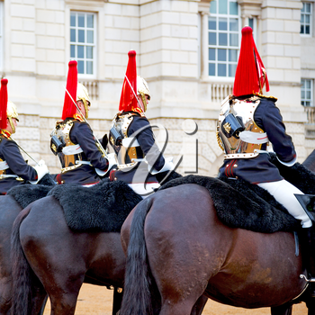 in london england horse and cavalry for       the queen