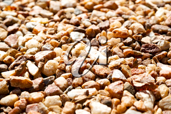 in south africa close up of the rocks stones near the beach and blur light