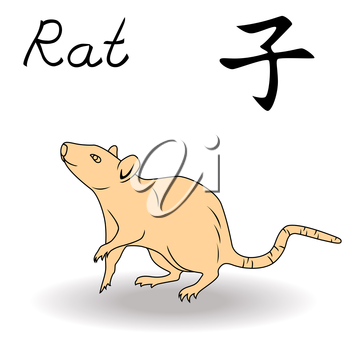 Eastern Zodiac Sign Rat, symbol of New Year in Chinese calendar, hand drawn vector artwork isolated on a white background