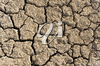 Abstract background with arid and dried cracked soil
