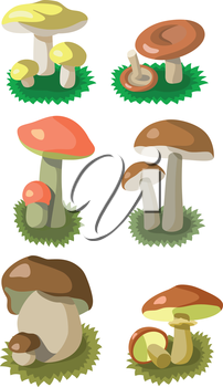 Vector. Mushrooms color set 002