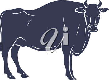 Hand Drawn Bull Illustration isolated on White Background. Vector illustration