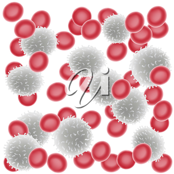 Coronavirus 2019-nCoV in blood illustration on white background. Virus microbe infection organism under the microscope