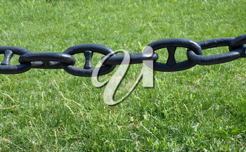 Chain links on a background of green grass after rain