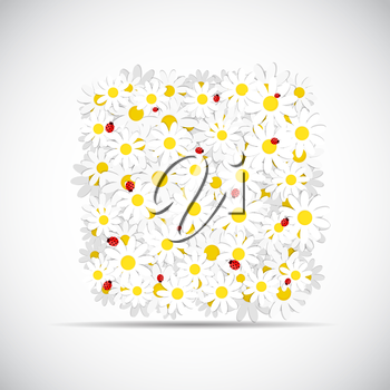 Flora Daisy Design Isolated Vector Illustration EPS10