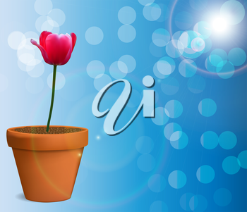 Floral background with Tulips Vector Illustration EPS10