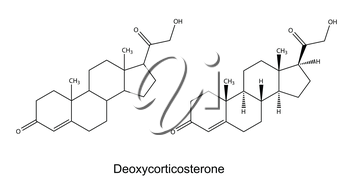 Structural chemical formulas of deoxycorticosterone, 2D illustration, vector, isolated on white background