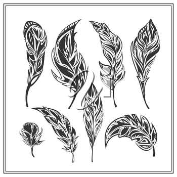 Set  monochrome feathers on a white background. Isolated decorative elements for design. Vector illustration