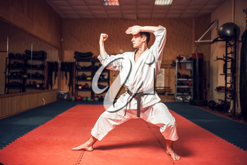Martial arts karate master in white kimono and black belt on fight training in gym practicing kata