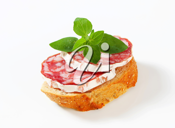 Crispy canape with French dry sausage