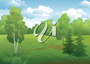 Landscape, green summer forest with fir and birch trees and cloudy sky. Vector