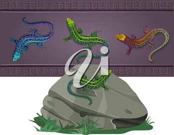 set of lizards of various colors, located on the wall and on the stone