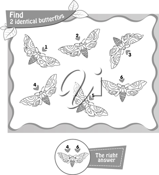 visual game, coloring book for children and adults. Task to find 2 identical butterflys. black and white vector illustration