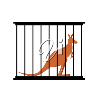 Kangaroo in cage. Animal in Zoo behind bars. Australian wild animal in captivity. Animal captivity in humans.