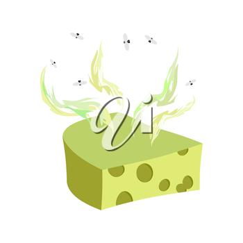 Cheese dorblu. Piece of cheese with a bad smell and flies. Vector illustration food delicacy