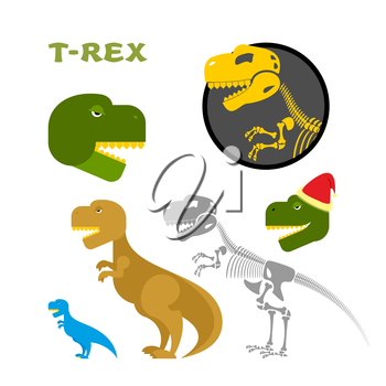 Tyrannosaurus collection of items. Bones and the skeleton. Head of prehistoric Raptor. Monster of Jurassic period. Dinosaur emblem. T-Rex set designs. Ancient predator in Santa Claus hat.