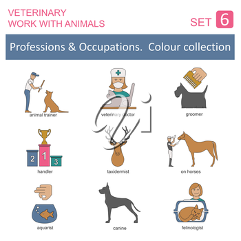 Professions and occupations coloured icon set. Veterinary, work with animals. Flat linear design. Vector illustration