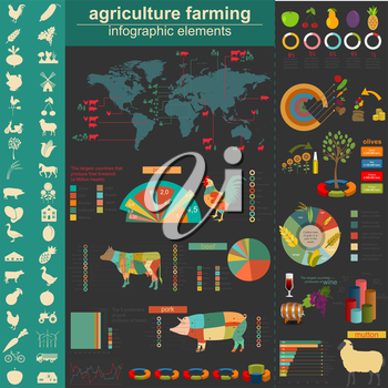 Agriculture infographics. Vector illustration
