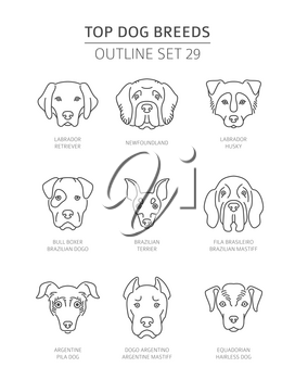 Top dog breeds. Pet outline collection. Vector illustration