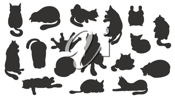 Sleeping cats poses. Flat color simple style design. Black silhouettes cats. Vector illustration